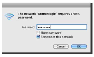 Type your wireless network password