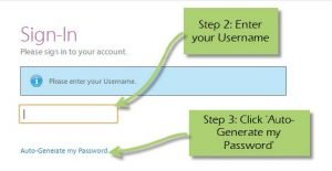 FIG 3 Auto-Generate my Password